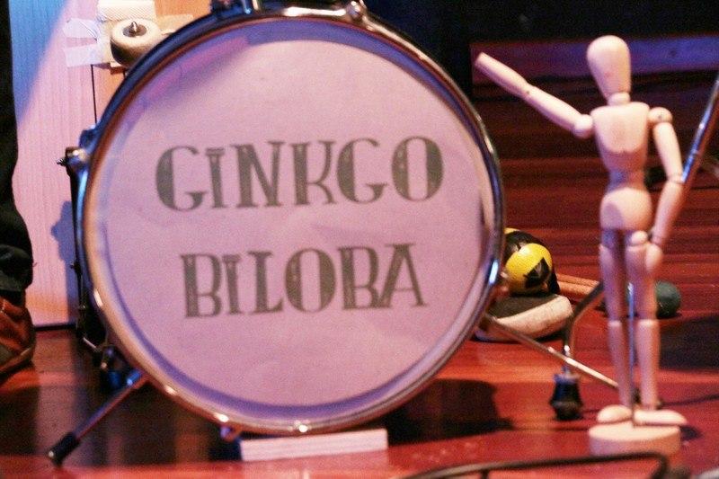 Ginkgo-Biloba_000001_zpsdy5erbl8
