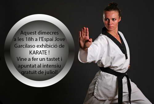 exhibicio karate