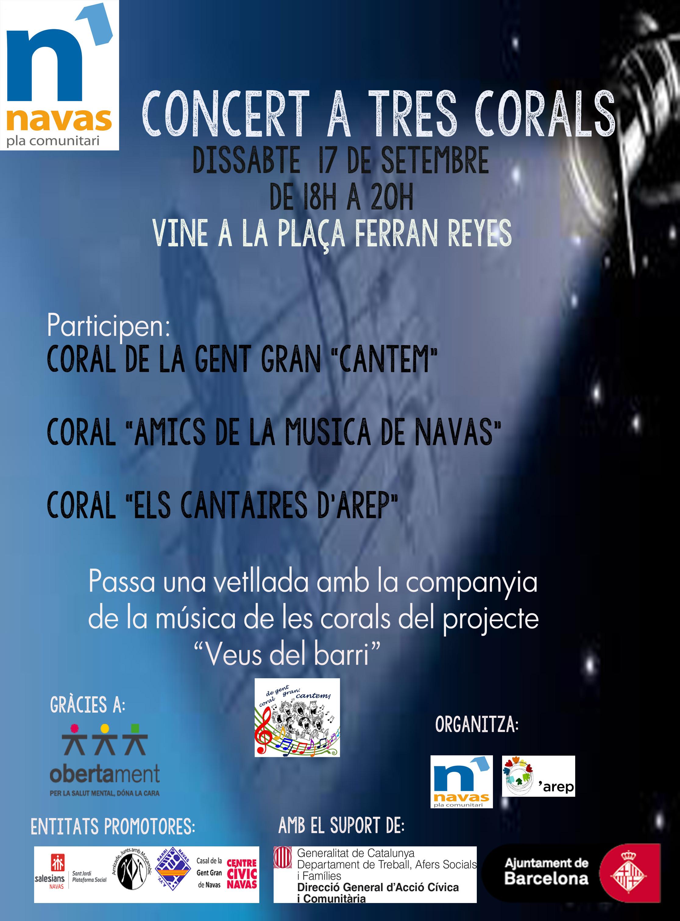 cartell-concert-dia-17
