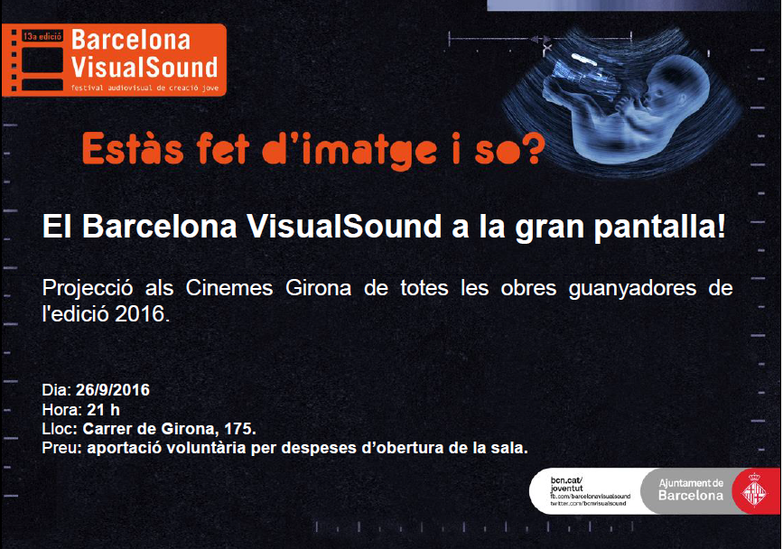 visualsound-cinemes-girona